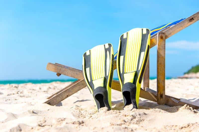 调遣结构树 放置在海滩的黄色潜水飞翅, 库存图片