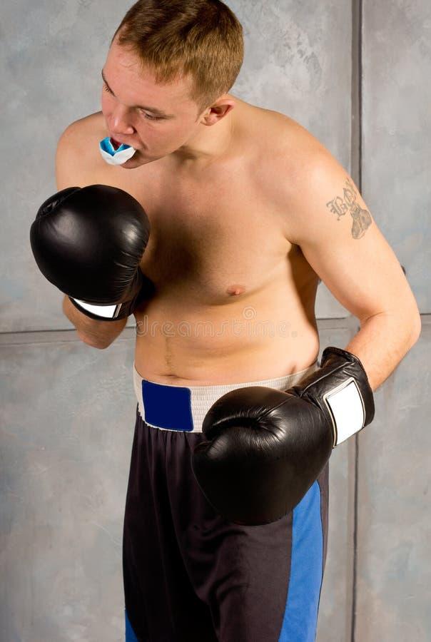 调整他的嘴罩的年轻拳击手 库存照片
