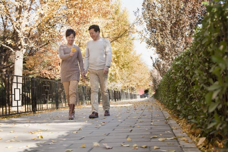谈成熟的夫妇步行在公园在秋天 免版税库存图片