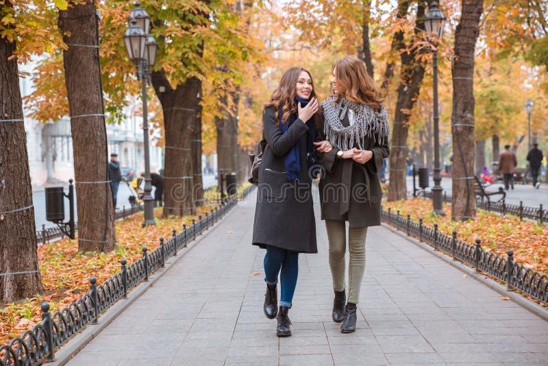 谈话两个的女朋友走和户外 库存照片