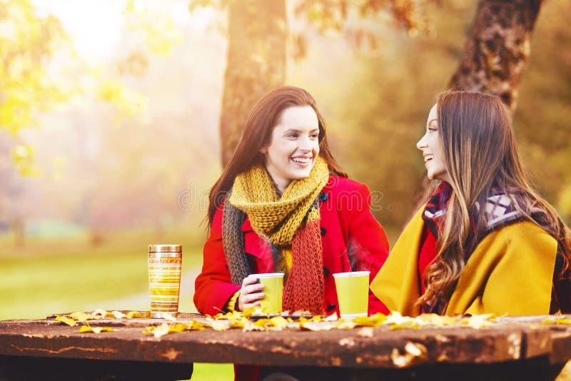 谈话和享用在一秋天天的两个美丽的少妇 库存图片