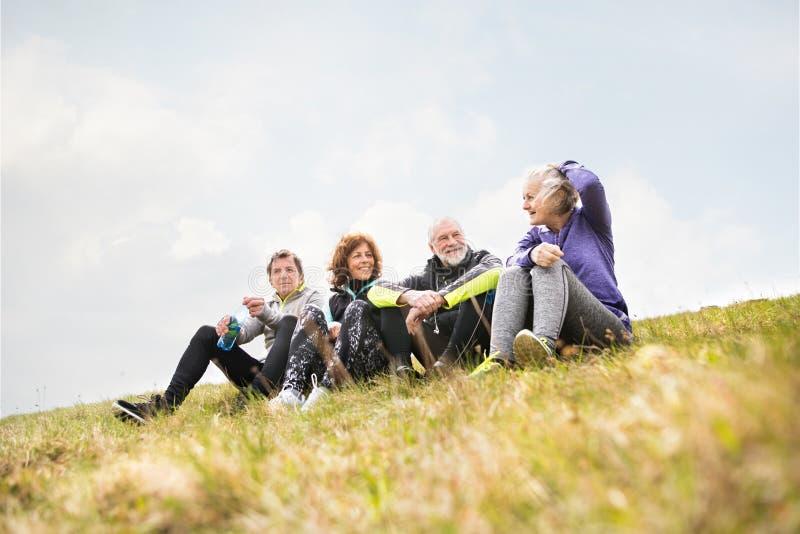 谈话的小组户外资深赛跑者,休息和 免版税库存图片