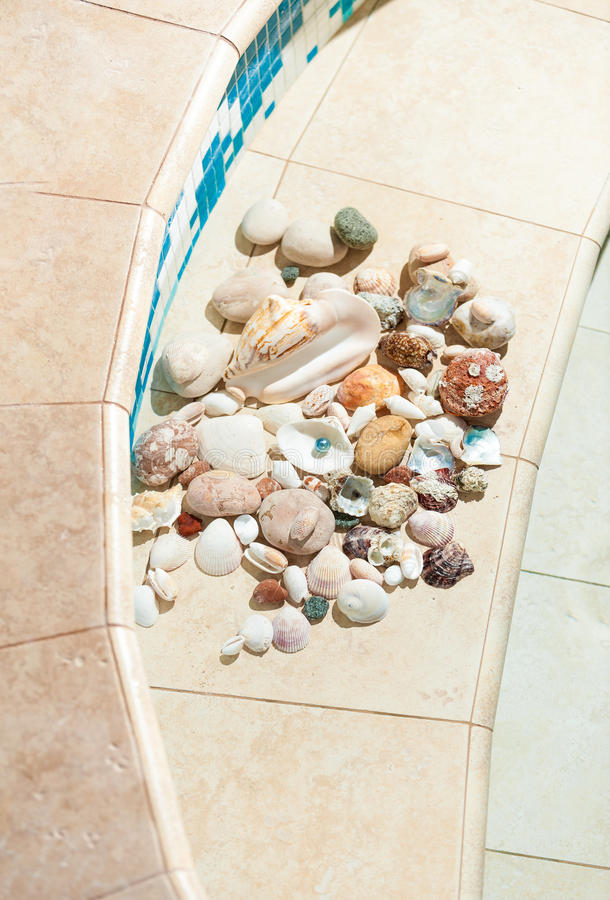 说谎在游泳池底部的贝壳和小卵石  库存照片