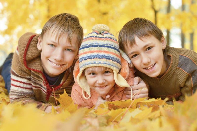 黄色图成人_说谎在黄色叶子的孩子