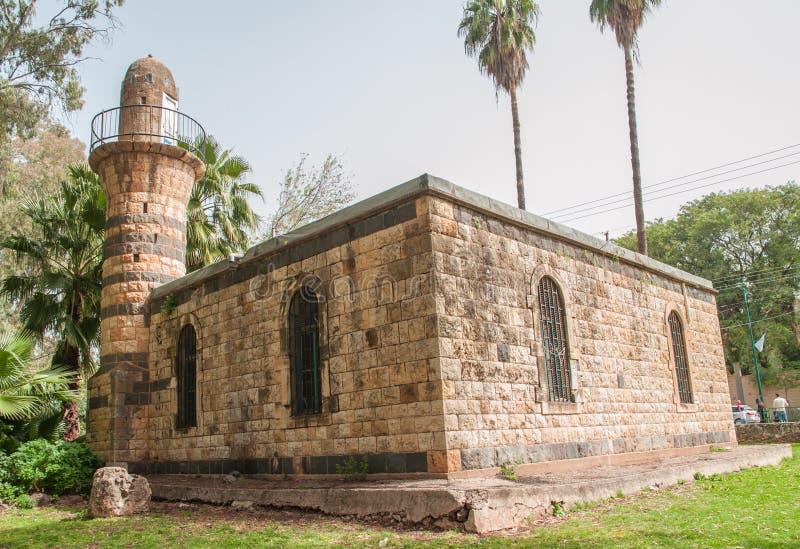 谢莫纳城古老mozeum在以色列,在公园 免版税库存图片
