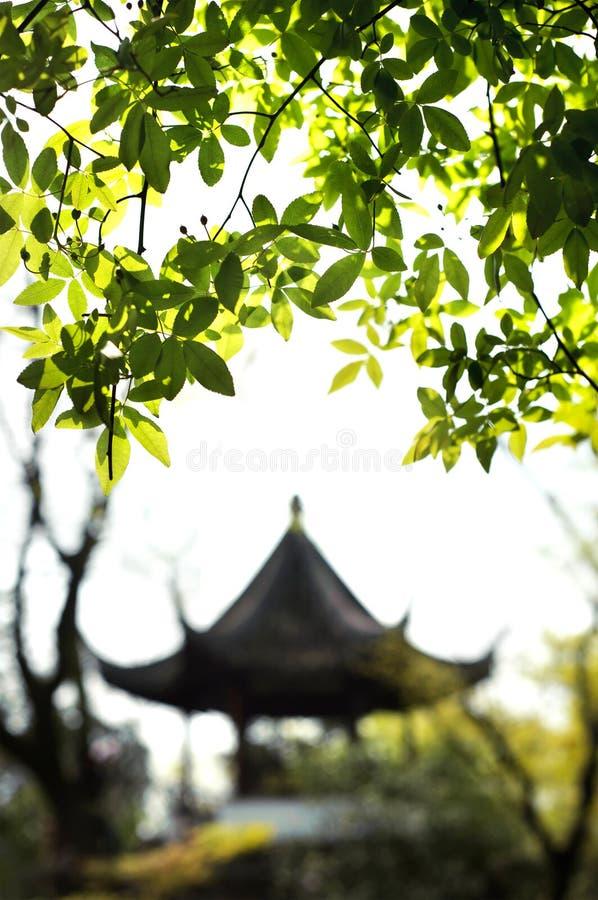 谦逊的管理员的庭院,苏州 免版税库存照片
