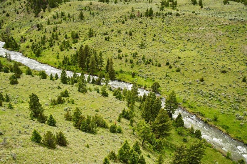 谷和河 库存照片