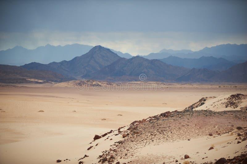 谷在有沙丘和山的西奈沙漠 库存图片