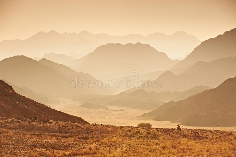 谷在西奈沙漠 图库摄影