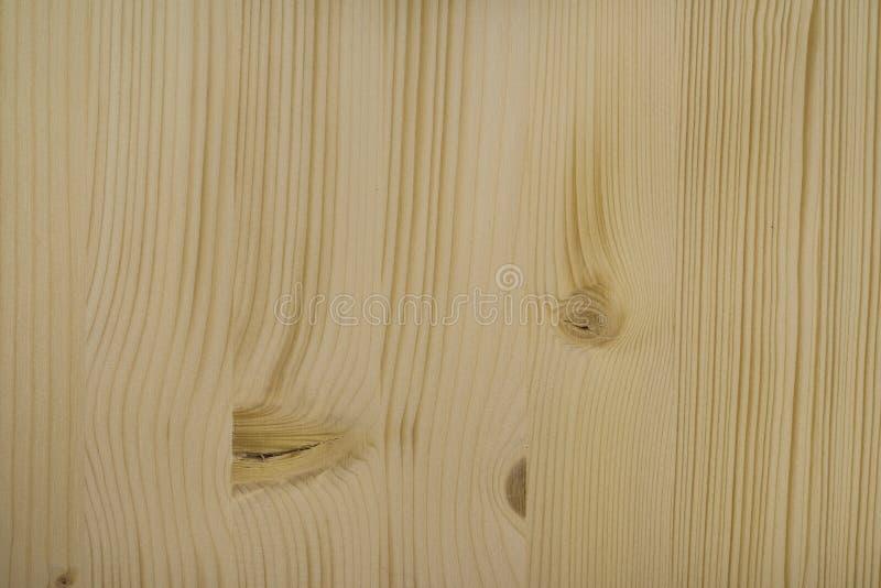 谷物槭树纹理木头 库存照片