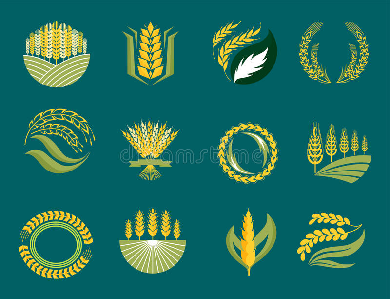 谷物耳朵和五谷农业产业或商标徽章设计传染媒介食物例证有机自然标志 皇族释放例证
