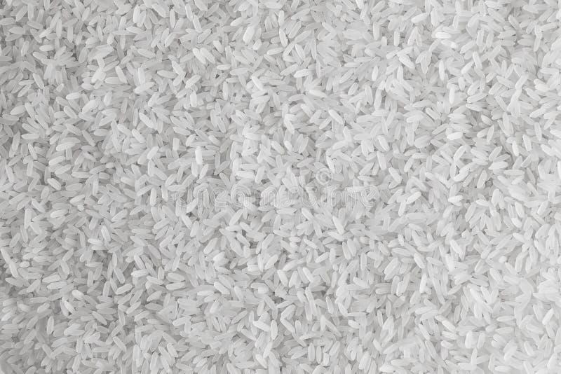 谷物长的米 免版税图库摄影