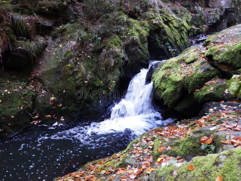 谷的流动的河 免版税库存照片
