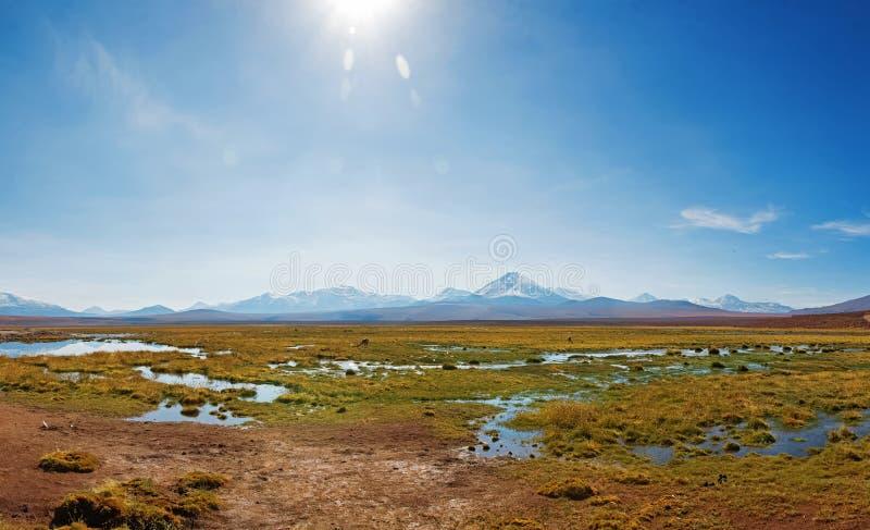 谷美好的晴朗的全景在阿塔卡马沙漠,智利 免版税库存图片