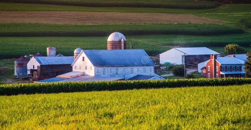 谷仓和房子一个农场的在农村约克县, PA 免版税库存照片