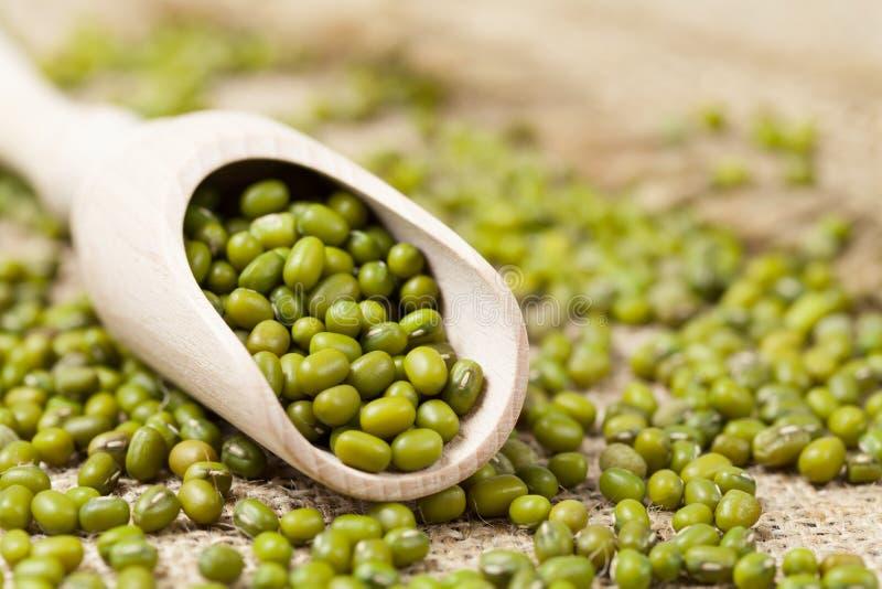 绿豆健康素食超级食物 库存照片