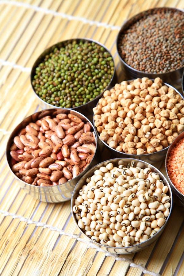 豆印地安人扁豆 免版税库存照片