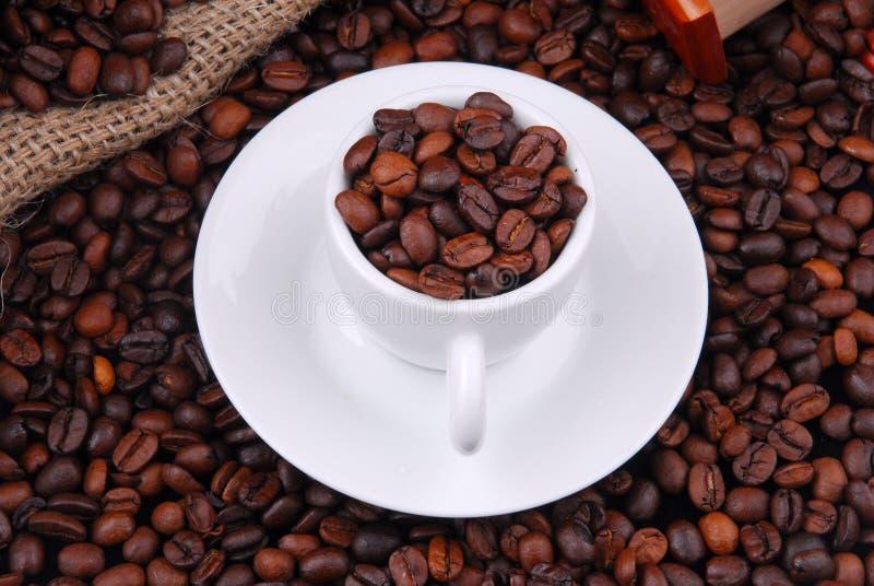 豆咖啡油煎了 免版税库存图片