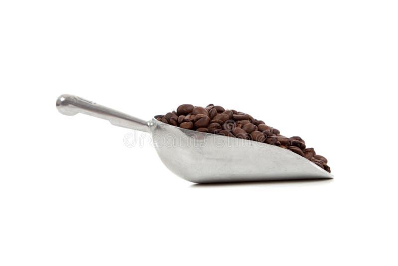 豆咖啡瓢银白色 库存图片