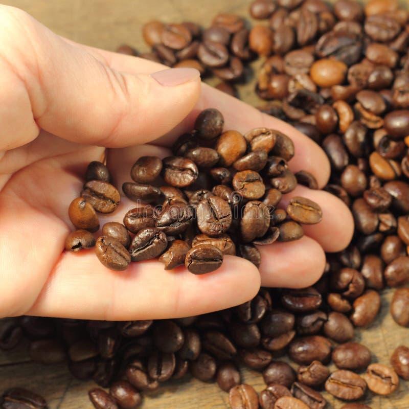 豆咖啡纹理木头 免版税库存照片