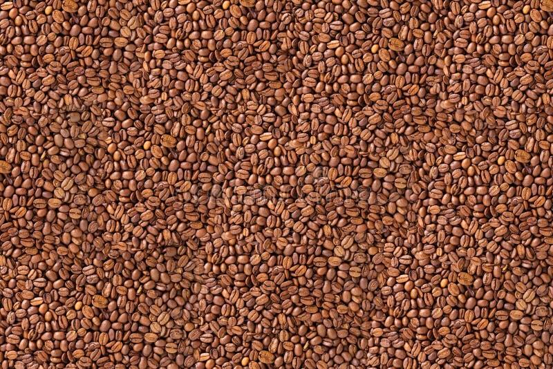 豆咖啡纹理 免版税库存照片