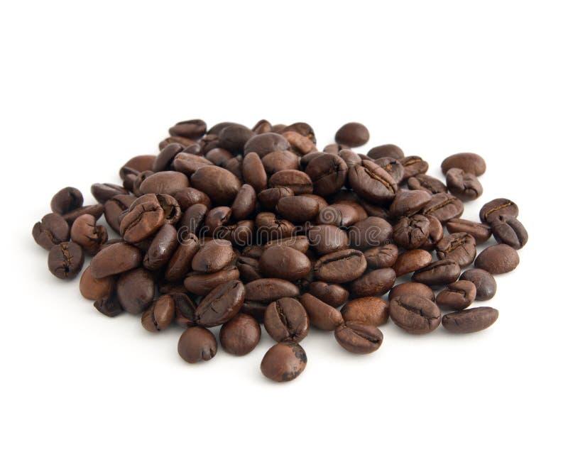豆咖啡 库存图片