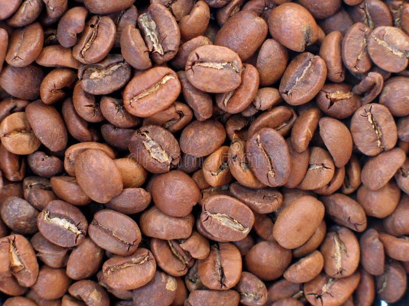 Download 豆咖啡 库存图片. 图片 包括有 食物, 投反对票, 咖啡, 饮料, 核心, browne, 谷物, 上等咖啡 - 187061