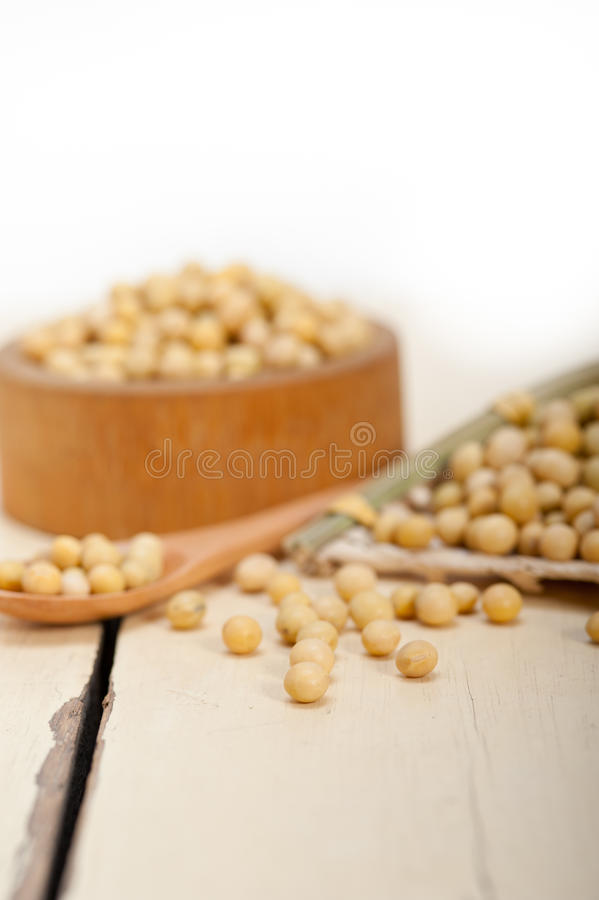 豆有机大豆 免版税库存图片