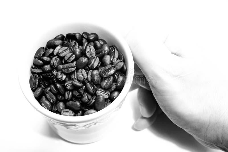 豆杯子浓咖啡 免版税库存图片