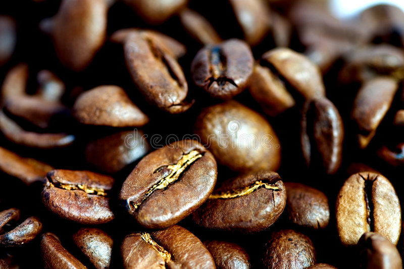 豆特写镜头咖啡 图库摄影