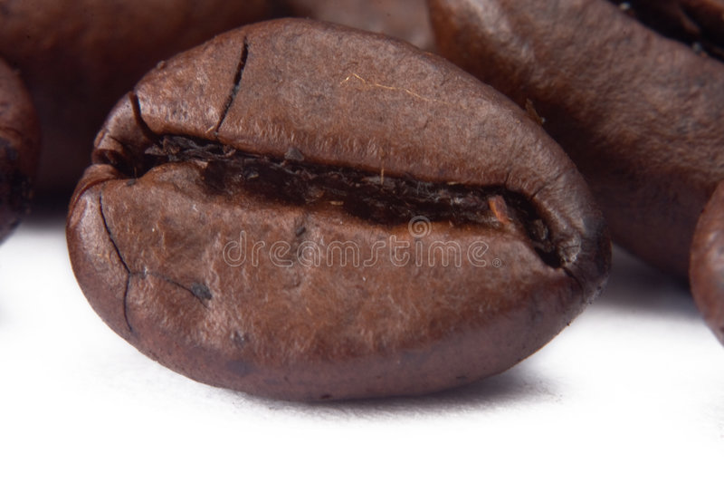 豆特写镜头coffe 免版税库存图片