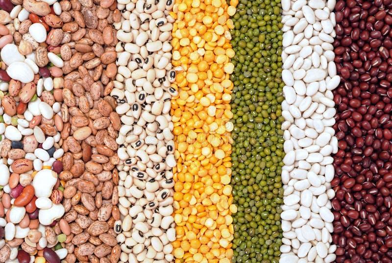 豆的混合 免版税库存图片