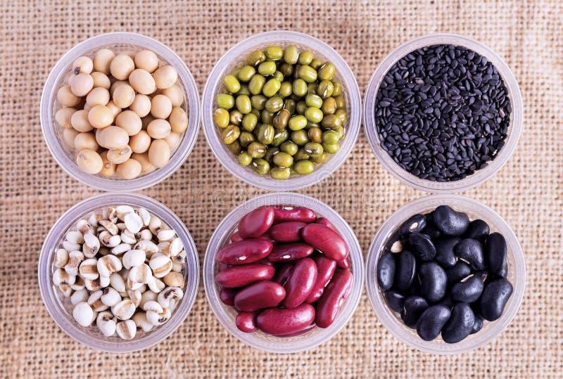 豆的许多类型在大袋的一个杯子被分离 免版税库存照片