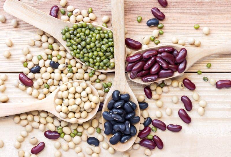 豆的许多类型在木桌上的一把匙子被分离 图库摄影