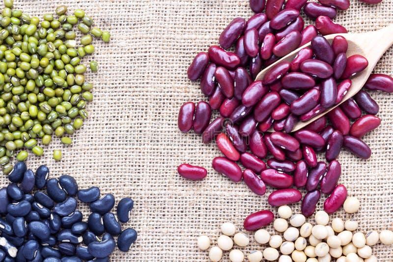 豆的许多类型在麻袋布的一把匙子被分离 免版税库存图片