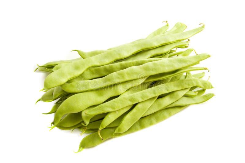 豆短冷期 库存图片
