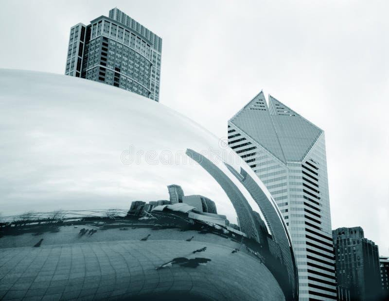 豆芝加哥 库存图片