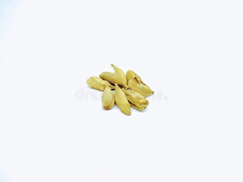 豆蔻果实的图片在白色背景的, 库存图片