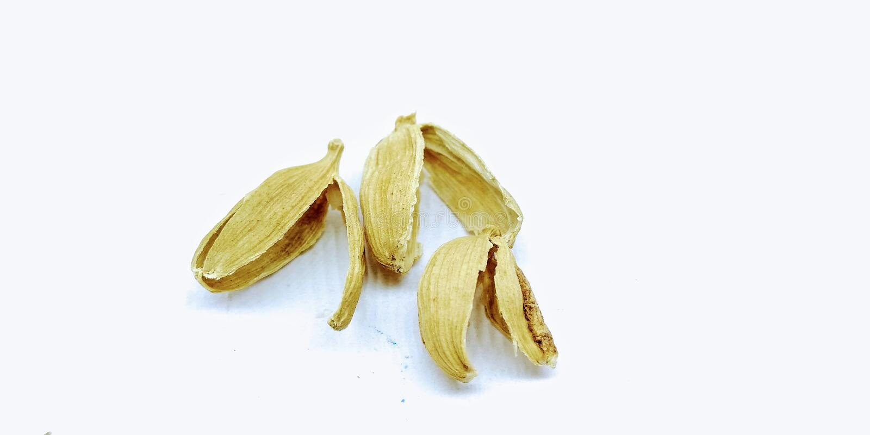 豆蔻果实的图片在白色背景的, 免版税库存照片
