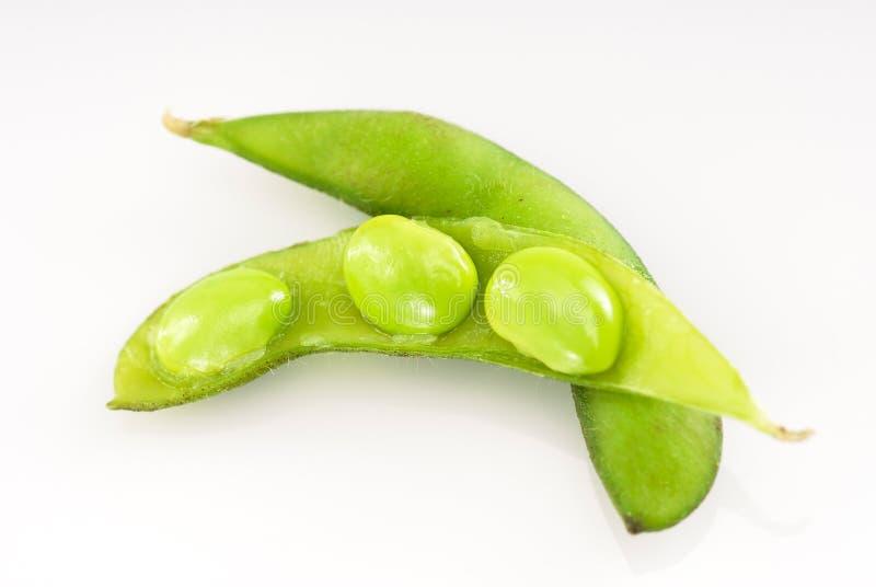豆豌豆荚原始的大豆三 图库摄影