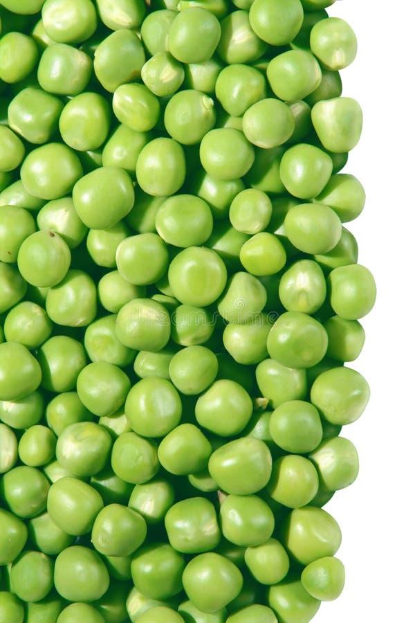 豆豌豆 库存图片