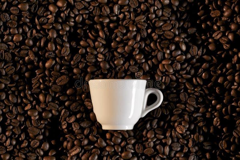 豆caffe coffe杯子浓咖啡 库存照片