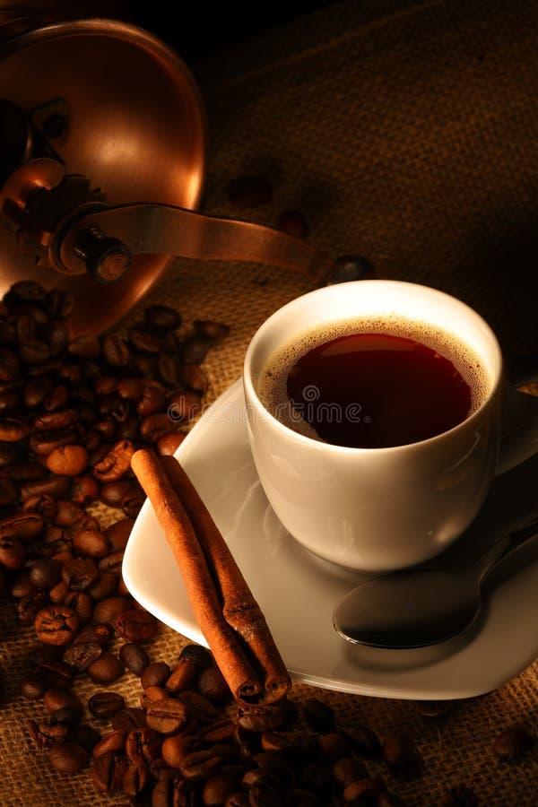 豆cinamon新鲜的咖啡杯 库存图片