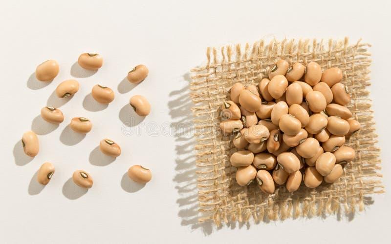 豇豆豆类 关闭五谷延长白色桌 免版税库存照片
