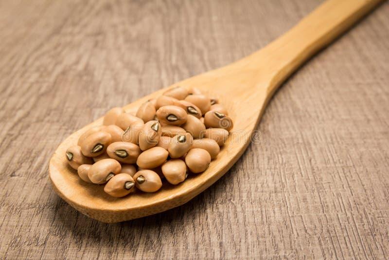 豇豆豆类 匙子和五谷在木桌 免版税库存图片