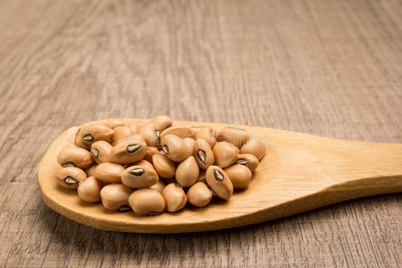 豇豆豆类 在木匙子的五谷 土气 库存照片