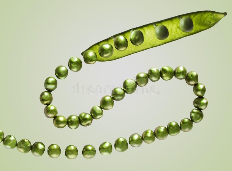 豌豆和珍珠 免版税库存图片