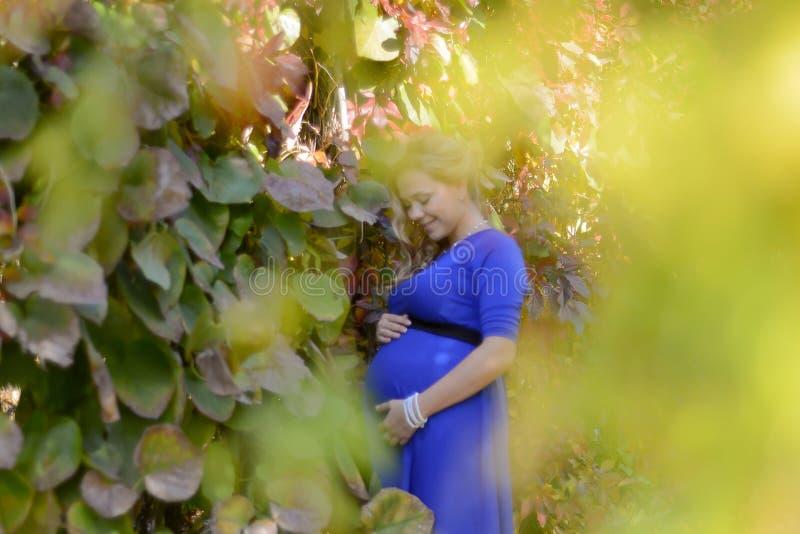 画象一名可爱的年轻白肤金发的孕妇 库存照片