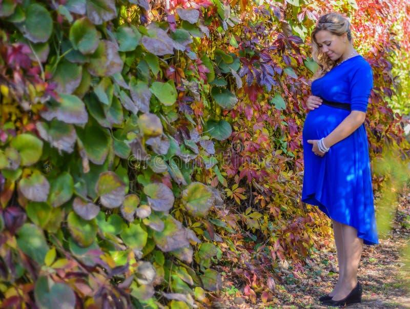 画象一名可爱的年轻白肤金发的孕妇 免版税图库摄影