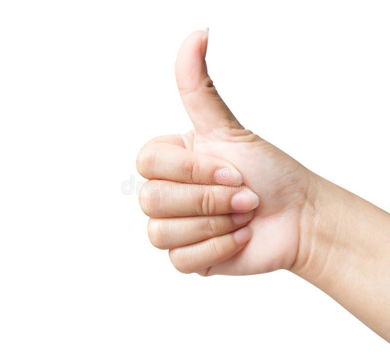 给象在backjground白色的妇女的手 免版税库存图片